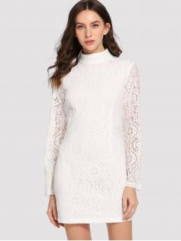 White Plain Contrast Lace Stand Collar Mock Neck Lace Dress Pretty