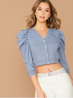 Elegant Plain Regular Fit V neck Long Sleeve Placket Blue and Pastel Crop Length Buttoned Placket Leg-of-mutton Sleeve Crop Tee