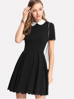Women Preppy A Line Fit and Flare Pleated Collar Short Sleeve Natural Black Short Length Contrast Peter Pan Collar Scalloped Dress