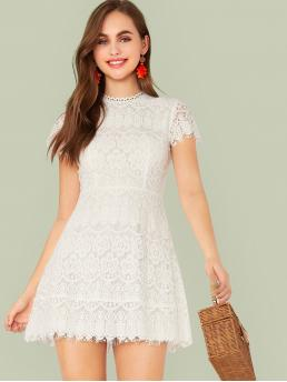 Romantic A Line Plain Regular Fit Round Neck Short Sleeve Regular Sleeve High Waist White Short Length Solid Zip Back Fit and Flare Lace Dress with Lining