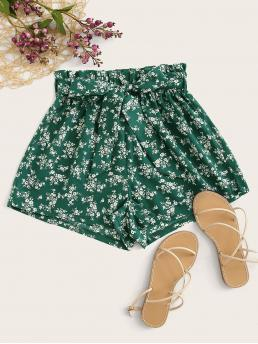 Boho Ditsy Floral Regular Elastic Waist High Waist Green Ditsy Floral Print Belted Shorts with Belt
