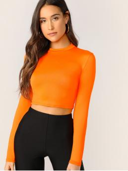 Casual Plain Slim Fit Stand Collar Long Sleeve Pullovers Orange and Bright Crop Length Neon Orange Mock Neck Solid Crop Tee