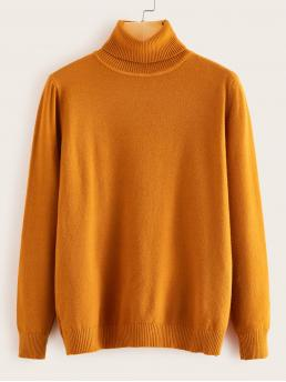 Womens Long Sleeve Pullovers Acrylic Plain Solid Turtleneck Sweater