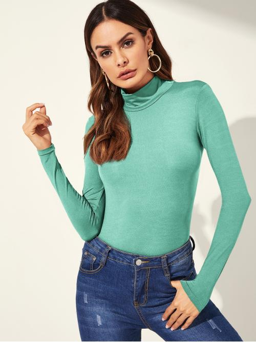 Elegant Plain Slim Fit High Neck Long Sleeve Regular Sleeve Pullovers Green Regular Length High Neck Solid Tee