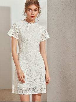 Elegant Fitted Plain Straight Regular Fit Stand Collar Short Sleeve Regular Sleeve High Waist White Short Length Zip Back Guipure Lace Overlay Fitted Dress with Lining