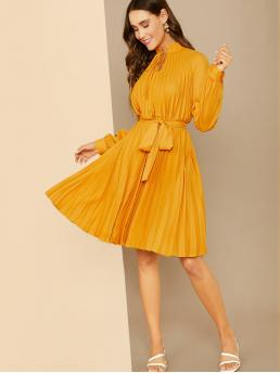 Elegant A Line Plain Pleated Regular Fit Stand Collar Long Sleeve Bishop Sleeve and Raglan Sleeve Natural Yellow and Bright Long Length Frilled Tie Neck Pleated Belted Dress with Belt