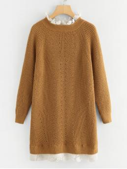 Brown Plain Contrast Lace Stand Collar Floral Lace Insert Eyelet Sweater Dress on Sale