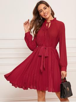 Elegant Tunic Plain Pleated Regular Fit Stand Collar Long Sleeve Natural Red Midi Length Tie Neck Self Belted Raglan Sleeve Pleated Dress with Belt