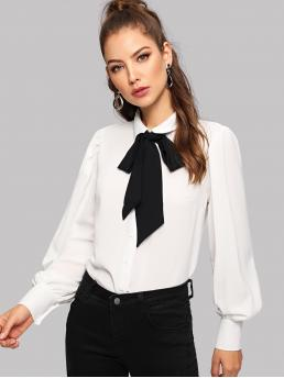 Elegant Shirt Regular Fit Stand Collar Long Sleeve Placket White Regular Length Bishop Sleeve Tie-neck Blouse