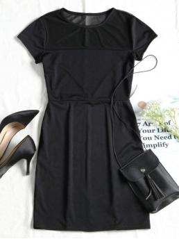 Spring No Patchwork Mesh Short Round Mini Sheath Casual and Going Casual Mesh Panel Fitted Mini Dress